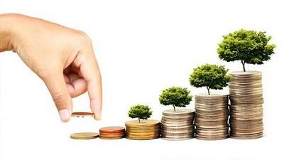 سرمایه گذاری داخلی رهیافتی مبتنی بر ظرفیتها