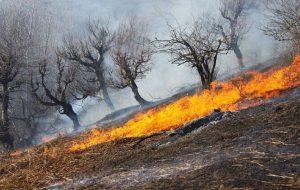 عوامل آتش سوزیهای اخیر مشخص شد