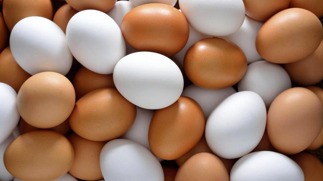 قیمت هر شانه تخم مرغ به بازار کارگروه تنظیم