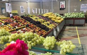 فروش میوههای پاییزه با قیمتهای باورنکردنی در میدان مرکزی+ جدول قیمت