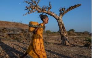(از اردوگاه آوارگان جنگی اتیوپی تا نمای داخلی از هواپیماهای مسافربری ایرباس + تصاویر
