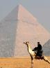 پلیس شترسوار مصر در کنار اهرام ثلاثه + تصاویر