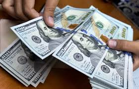 نزول لاک پشتی دلار/قیمت دلار و یورو صرافی ملی امروز 25دی 99